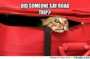 frabz-did-someone-say-road-trip-7bd516