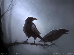 02-bird-wallpapers-amazing-crow-painted-wallpaper