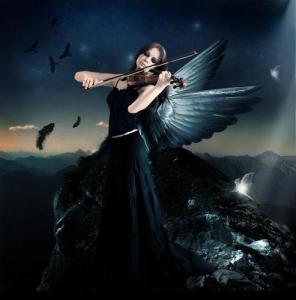 violin-ange-68149819753